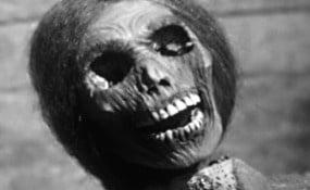 Imagens de Psicose - 1960
