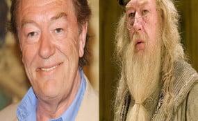 Michael Gamdon/Dumbledore